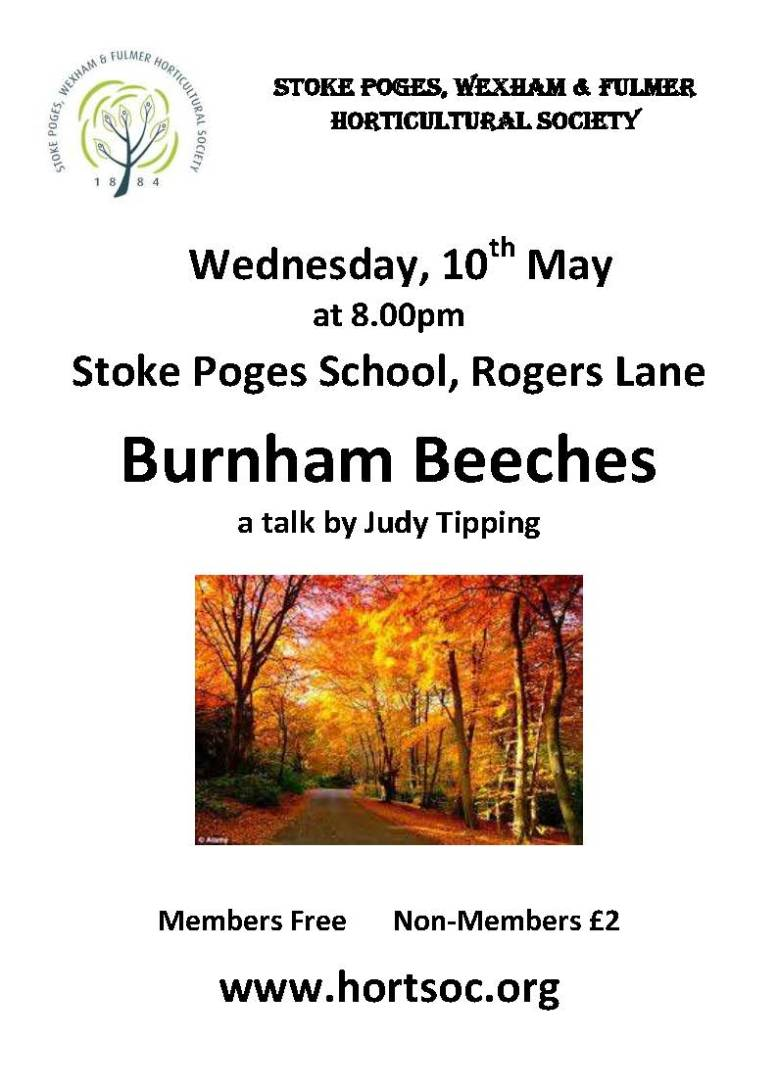 Burnham Beeches lecture 10 May 2017