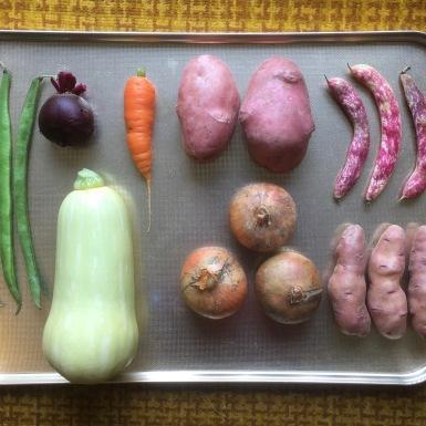 Mac Gollifer. Display of Vegetables